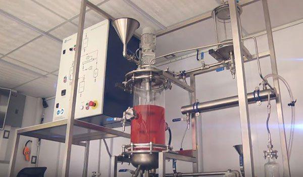 Biodiesel obtido